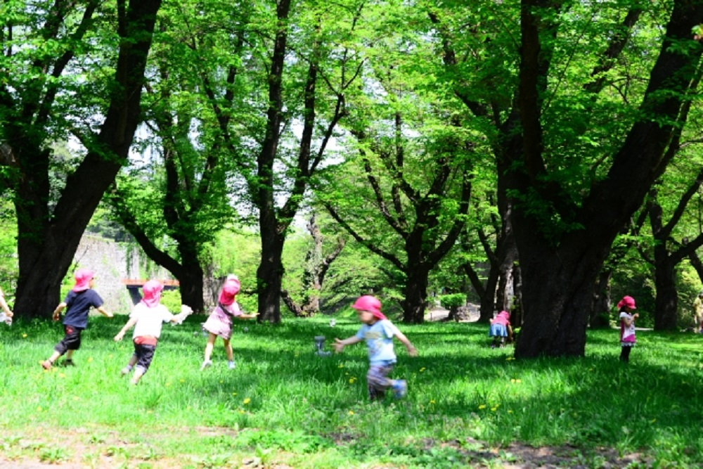 HSCにはどう対応すればいいの?園で出来る5つの効果的な方法をご紹介!